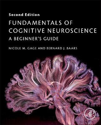 9780128038130 - Fundamentals of Cognitive Neuroscience